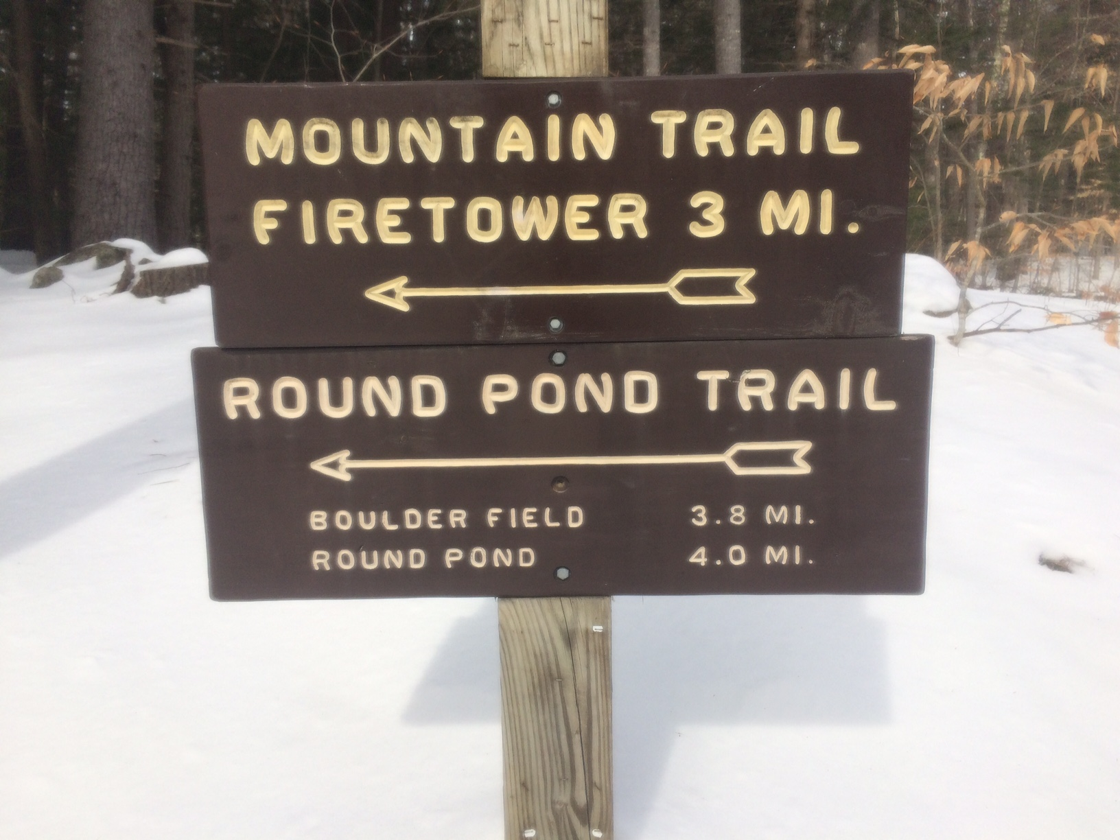 Mtn trail:firetower sign